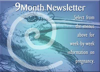 9 Month Newletter