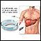 Liver biopsy